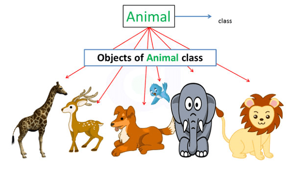 example of object